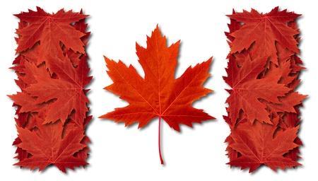秋のシンボルとして 3 つの次元の赤いカエデの葉で作られたカナダの葉の旗