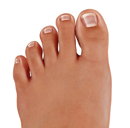 medical field: Healthy toes close up with a human foot with clean nails as a symbol of treating and diagnosing feet in the medical field of podiatry isolated on a white background
