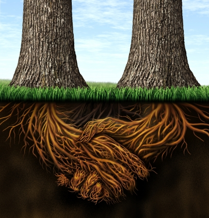 merging together: Strong foundation as a business concept of stability and loyalty with two trees with roots under ground in the shape of hands shaking as a symbol of agreement and merging forces together for success