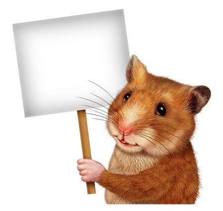 Pet criceto in possesso di un segno bianco in bianco su un bastone come un concetto di marketing e pubblicità con il mouse carino come mammifero con un sorriso comunicare un importante messaggio di Veterinaria o Veterinario correlati