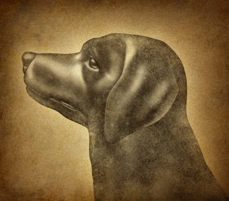 Grunge Dog on an old parchment paper texture as a symbol of veterinary canine health care for house pets and veterinarian services or training of mixed breed and a purebred puppy Stock Photo - 15739400