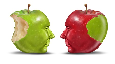 Teaching a student education concept with green and red apples shaped as human heads exchanging knowledge and skill from teacher to trainee on a white background or the idea of identity theft  Stock Photo - 15739375