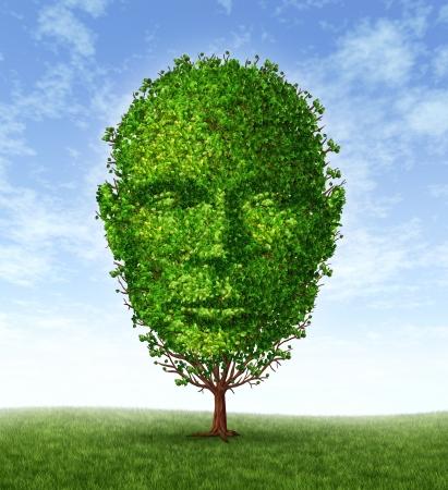 personalidad: El desarrollo personal y el crecimiento de la personalidad como un símbolo médico de la psicología como un árbol en la forma de una cabeza humana frente a frente como el pensamiento y la inteligencia social para la salud mental, comportamiento Foto de archivo