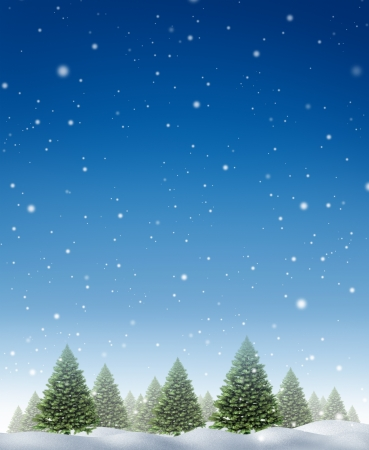 holiday background: Winter holiday background with a cold forest of pine trees on a snowing blue night fall sky as a design element for the Christmas season and the festive celebration of the time of giving  Stock Photo