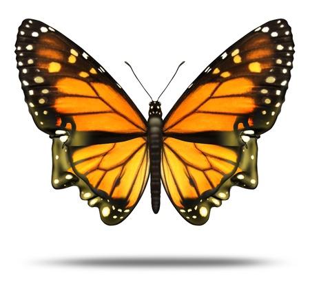 Bevrijd je geest en de vrijheid om de kansen van het leven en de persoonlijke prestatie verkennen als een Monarch vlinder in de vorm van een menselijk hoofd met de kracht intelligentie als een brein gezondheidszorg pictogram Stockfoto - 15975788