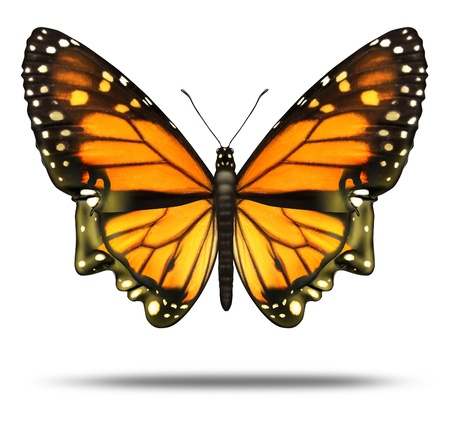 migrating animal: Free your mind and freedom to explore the opportunities of life  and personal achievement as a Monarch butterfly in the shape of a human head showing the power intelligence as a brain health care icon  Stock Photo