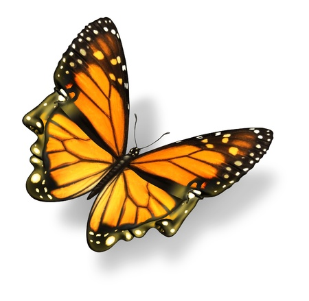 La liberté humaine et libérer votre esprit concept médical soins de santé avec un insecte papillon monarque sous la forme d'une tête humaine et le visage voler en l'air comme une force créatrice de l'occasion de la vie et de la réussite