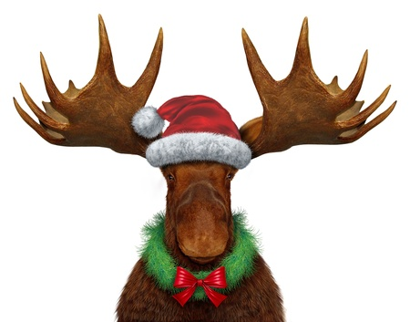 Christmas moose with santa clause hat and a holiday wreath with a red silk bow photo