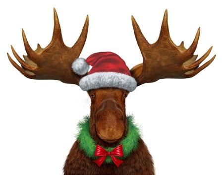 Natale alce con il cappello di Babbo Natale e una corona vacanza con un fiocco di seta rossa Archivio Fotografico - 16086666