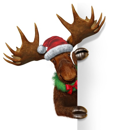 santa moose: Christmas holiday northern moose with huge antlers holding a blank white sign wearing a santacluse hat and a wreath with a red bow with copy space as a festive winter season communication and advertising for seasonal celebration of the new year  Stock Photo