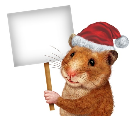 Holiday pet holding a blank white sign as an advertising and marketing concept with a cute mouse like mammal with a smile communicating an important Veterinary or Veterinarian related message  Stock Photo - 16244893