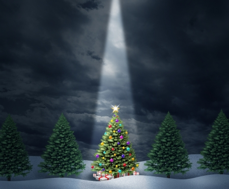 decorated christmas tree: Illuminated Christmas tree with a row of evergreen pines and a center decorated holiday icon with bows and gifts enlightened with heavenly light from above  against a cold peaceful winter night
