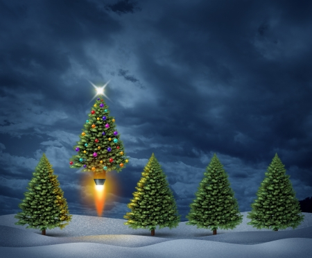 blast off: Holiday excitement and christmas season joy with a group of pine trees in a night time snow covered landscape