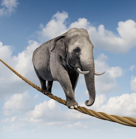 elefante: Gesti�n del riesgo y el miedo a grandes retos empresariales y la incertidumbre con un gran elefante caminando sobre una cuerda peligroso alto en el cielo como s�mbolo de equilibrio y superaci�n para el �xito objetivo