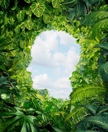 way out: Find your way out from the dark danger of the jungle of uncertainty and confusion with rainforest plants in the shape of a human head leading to an open sky of freedom
