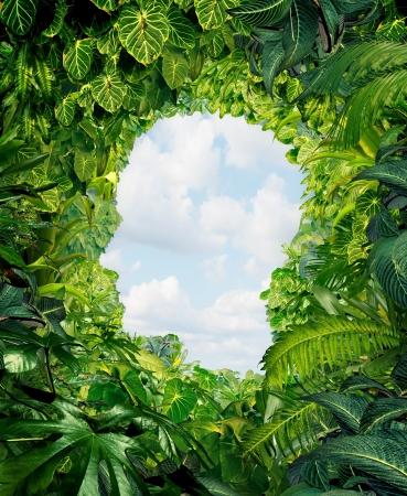 Zoek je weg uit de donkere gevaar van de jungle van onzekerheid en verwarring met planten in het regenwoud in de vorm van een menselijk hoofd leidt tot een open hemel van vrijheid
