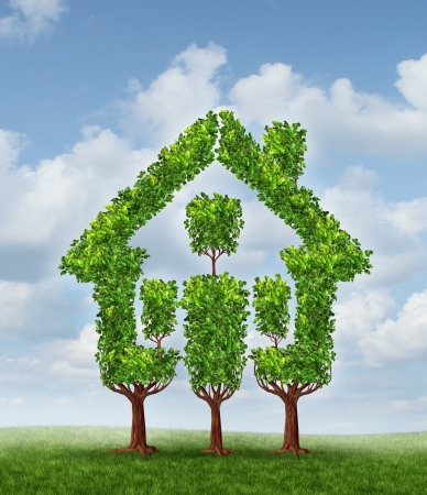 House Tree as a symbol of real estate planning and family home Stock Photo - 17472616