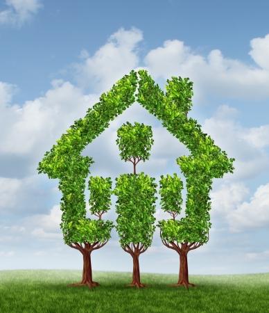 feuille arbre: Maison de l'arbre comme symbole de la planification immobili�re et la maison familiale Banque d'images