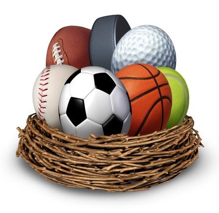 Sport Nest-Konzept mit einem Fußball Basketball Eishockey Puck baseball Tennis Fußball Golfball in der Form eines Ei als Symbol der Gesundheit und Fitness durch körperliche Aktivität für Familie und Jugend