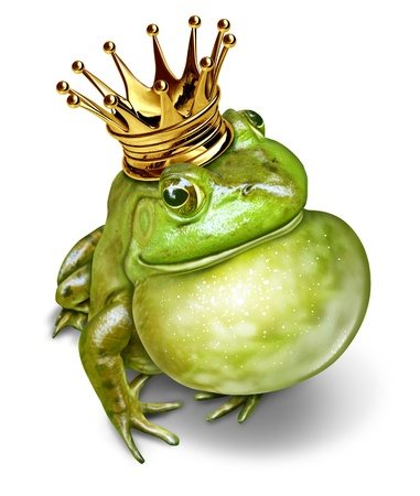 Frog prince with gold crown and an inflated throat representing the fairy tale concept of communication  change and transformation from an amphibian to royalty