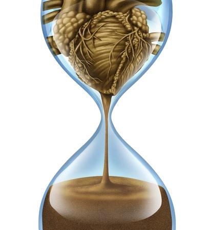 reloj de arena: Enfermedades del corazón y problemas coronarios de salud causados ??por el envejecimiento humano de las arterias y el sistema circulatorio con un reloj de arena con arena que cae en forma de órgano interior en blanco Foto de archivo