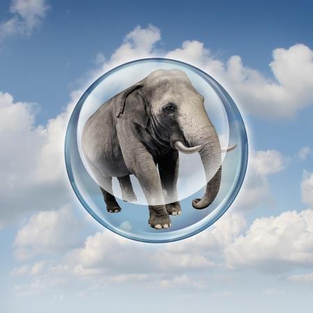 magabiztos: Teljesítmény lehetőségek koncepció reális elefánt felemelte a levegőbe egy buborék szférában, mint az üzleti szimbóluma teljesítmény és emelkedést képességeit, hogy sikerül felfelé növekedés