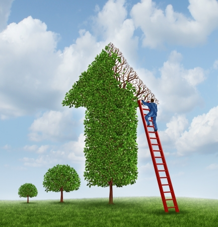 wealth: Investing advice and financial help with a tree shaped as an upward arrow with missing leaves on the branches and a businessman climbing a red ladder to inspect the problem and cure the wealth management challenge