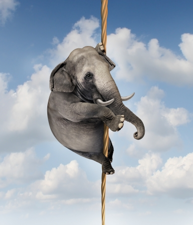 expertise: Strong determination managing risk and uncertainty with a large elephant climbing a rope high in the sky as a symbol of vision and being driven to succeed and overcoming fear for goal success