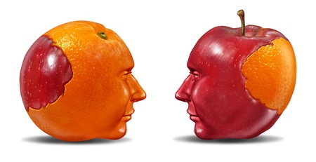 Create Synergy and leadership in social ties as multi ethnic cooperation in education learning and fair trading from one partner to another team member with an apple and an orange puzzle shaped as human heads on white  Stock Photo