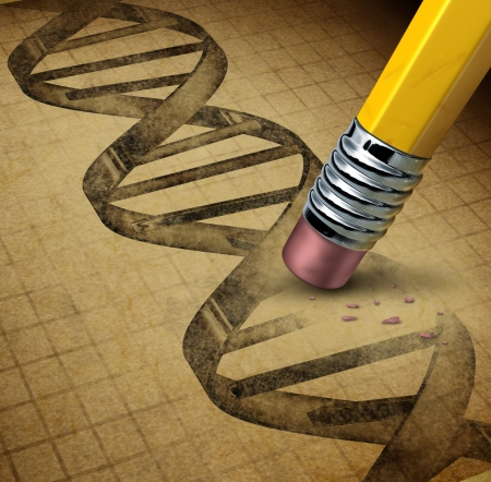 eraser: Genetic engineering and DNA manipulation as the biotechnology science of genetically modified foods or living organisms with an image of a dna strand on a parchment texture being changed by a pencil eraser
