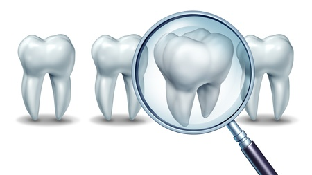 Best dental care concept as a group of teeth with one molar tooth in a magnifying glass as a patient choice for choosing a dentist and dentistry clinic or oral surgeon on a white background