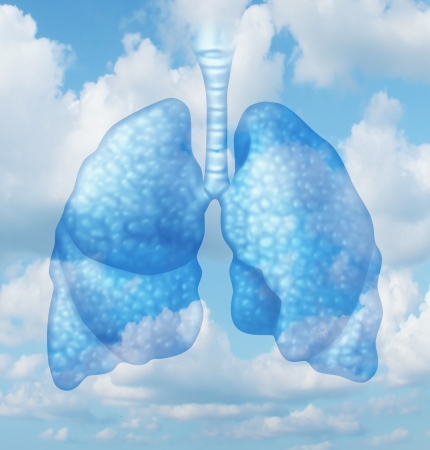 asthma: Clean air quality concept and healthy breathing in a pollution free envoironment represented by human lungs in a summer sky background as a symbol of healthful living