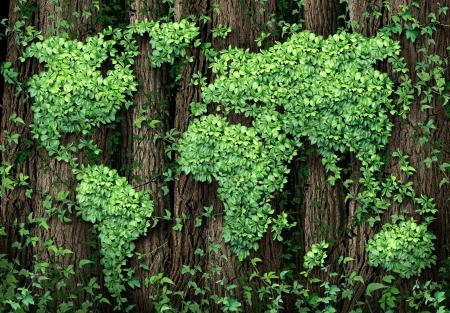 조직 된 그룹 포도 나무로 만든 세계의지도와를 businesss 개념으로 글로벌 개발 및 녹색 경제는 환경 보전의 상징으로 숲 나무에 성장 잎