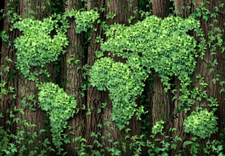 Global development and the green economy as a businesss concept with a map of the world made of an organized group vine leaves growing on forest trees as an environmental conservation symbol