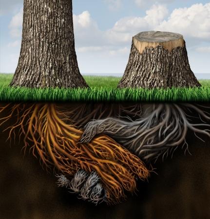 arbol de problemas: Problemas de asociación rotos como dos árboles con raíces formadas como un apretón de manos de negocios con un árbol cortados y la raíz podrida como un concepto de un contrato perdido o cancelado y desacuerdo pareja