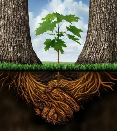 두 파트너 나무의 그룹이 새로운 성장 팀 기회의 창조의 결과로 계약 핸드 셰이크 모양의 식물 뿌리로 함께 오는 새로운 비즈니스 developmentgrowth 개념 스톡 콘텐츠 - 19986433