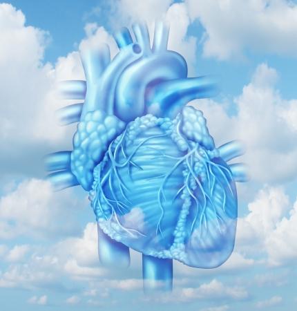 corazones azules: Coraz�n concepto m�dico de salud con una parte del cuerpo humano cardiovascular de una persona sana en un fondo del cielo como un s�mbolo m�dico de las arterias limpias Foto de archivo