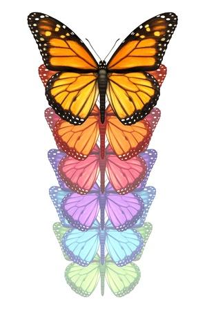 날개를 펴고 군주 나비는 흰색 배경에 고립 된 자유의 창의성과 디자인 혁신의 개념으로 상향 비행 변경하고 색상 변환을 통과 탈출
