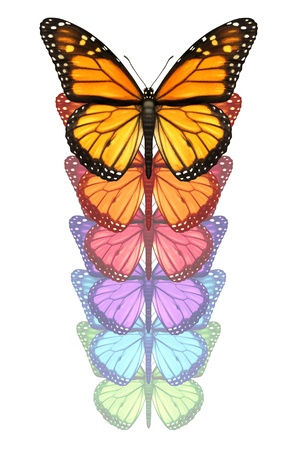 free your mind: Spread your wings and escape with a monarch butterfly flying upward changing and going through a color transformation as a concept of freedom creativity and design innovation isolated on a white background  Stock Photo