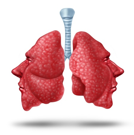 Understanding lung health and human lungs concept with the two sides of the inner breathing organ shaped as human heads as a heallth care symol of repiratory issues on a white background  photo