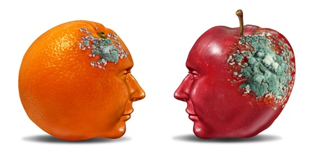 deteriorating: Bad partnership and mind control with an apple and an orange shaped as a human head with rotting mold as a business symbol of a brain or infection that is deteriorating a once strong partnership