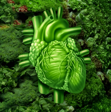 cardiovascular system: Healthy heart diet with dark leafy green vegetables at a vegetable stand as a health care and nutrition concept for eating natural raw food packed with natural vitamins and minerals good for the human cardiovascular system  Stock Photo