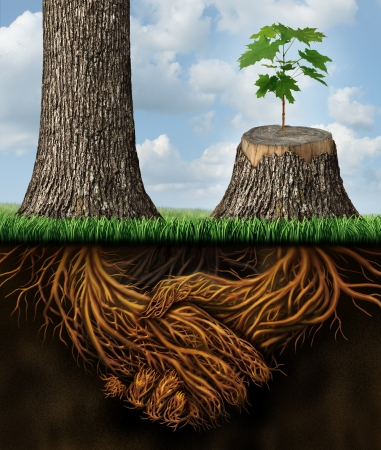 Business help and support concept as a tall tree next to a sick stump with a new growth of hope emerging in cooperation and teamwork with the roots shaped as a handshake providing the strength for success