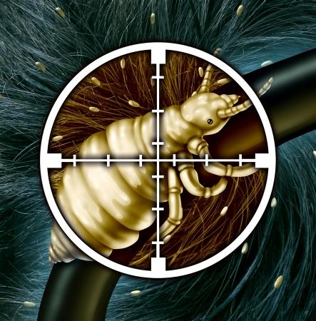 piojos: Matar a los piojos y la eliminaci�n de un problema de cabello como un concepto m�dico con un primer plano de un insecto piojo en un destino de Cruz con una infestaci�n de piojos par�sitos o huevos para incubar, como s�mbolo de soluciones a la infecci�n y el tratamiento Foto de archivo