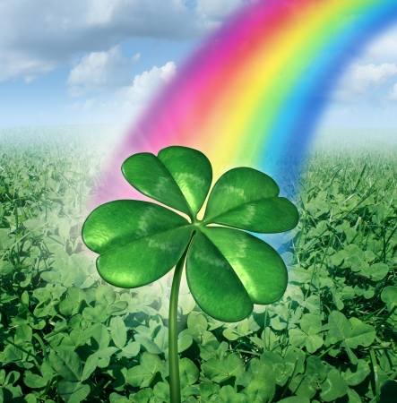 fortunate: Luck concept with a four leaf clover over a field of green clovers with a rainbow from the sky shinning down as a symbol of good fortune and prosperity as a metaphore for success and opportunity