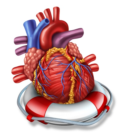 health care concept: Heart rescue medical health care concept with a human cardiovascular organ in a lifesaver or life belt as a symbol of emergency coronary surgery or therapy before a stroke or heart attack on a white background