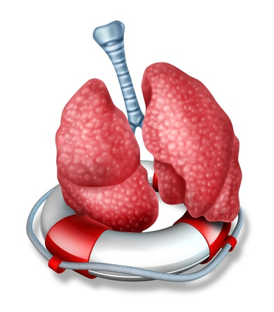 bronchioles: Lungs rescue medical health care concept with the human lung organ floating in a lifesaver or life belt representing saving the respiratory system of the body through emergency medicinal or surgical procedures  Stock Photo