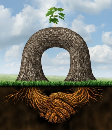 Partnership power business concept with two trees joining forces together to create a new growth opportunity with the roots of the plant as symbol of shaking hands in agreement after a contract