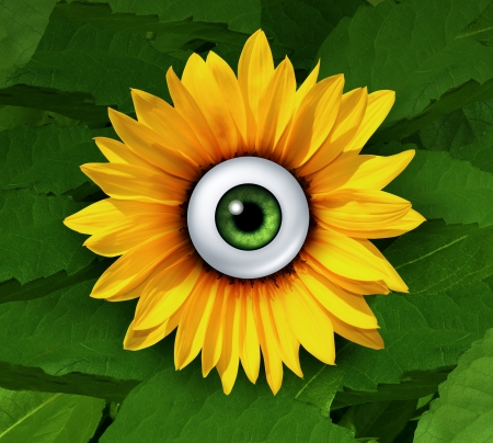 vigilant: Eye on nature concept and a focus on the protection and security of the natural environment with a focus on staying vigilant for conservation as a sunflower with a human eye in a green leaf environment  Stock Photo