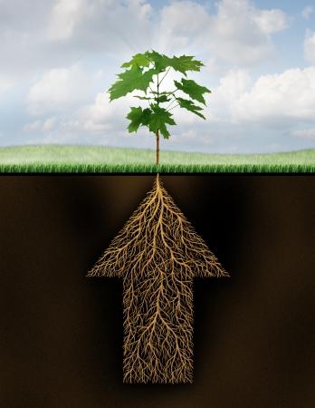 Wortel van succes als de groei zakelijk concept met een nieuwe kiemen boom die uit ondergrondse wortels gevormd als een pijl die omhoog gaat als een financieel symbool van toekomstige potentiële investeringen